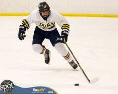 S-C AA hockey-9283