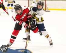S-C AA hockey-9498