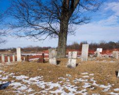 cemetery web-9572