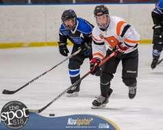 beth hockey-5459
