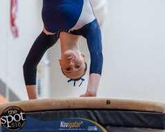 gymnastics-9553
