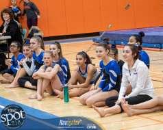 gymnastics-9581