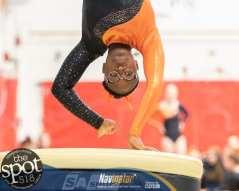 gymnastics-2097