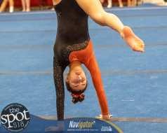 gymnastics-2591