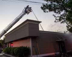 shaker pine fire web-6611