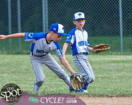 NC little league-3455