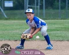 NC little league-3574