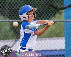 NC little league-4322