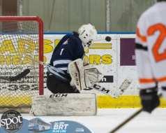 hockey and hoops web-3274