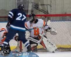 hockey and hoops web-3422