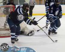 hockey and hoops web-3648
