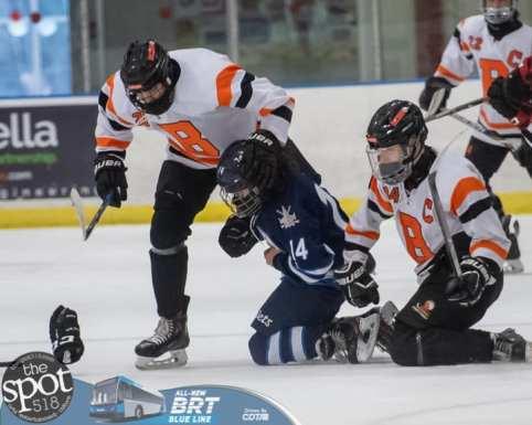 hockey and hoops web-3676