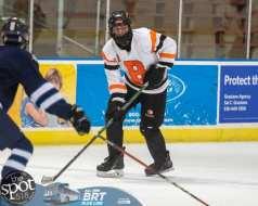 hockey and hoops web-3748