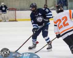 hockey and hoops web-3871