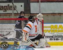 hockey and hoops web-3990