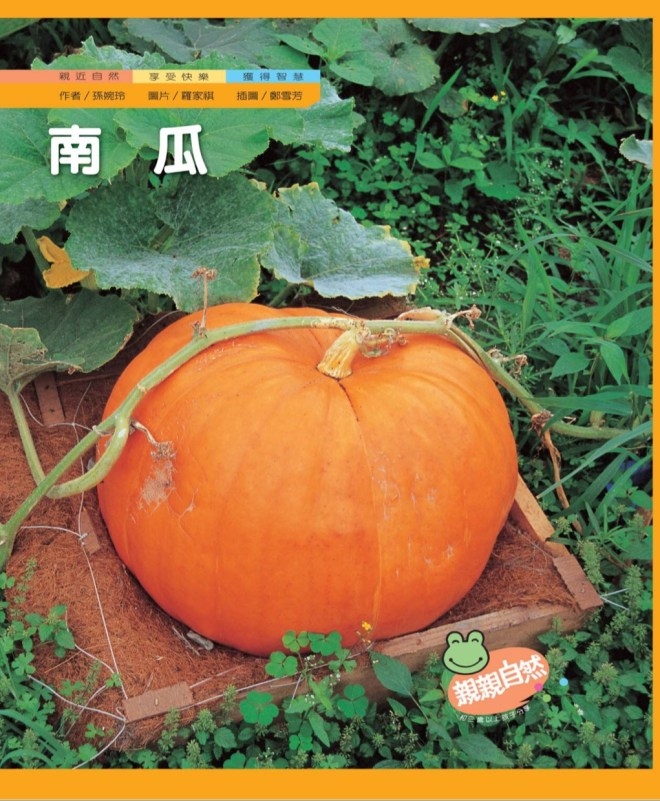 pumpkin theme fall theme toddler kids activities learning Chinese preschool book