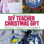 DIY Christmas Teacher Gift | School Mascot Ornament