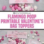 Printable Classroom Valentines | Flamingo Poop Bag Toppers