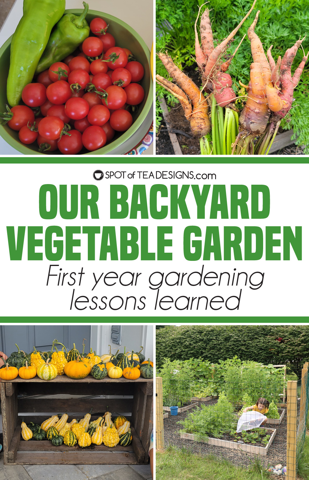 Backyard vegetable garden - first year lessons learned | spotofteadesigns.com