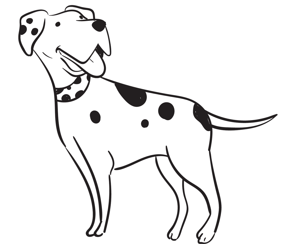 Cover Your Hunting Dog In Case Of Unexpected Injuries