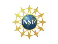 Národní vědecká nadace