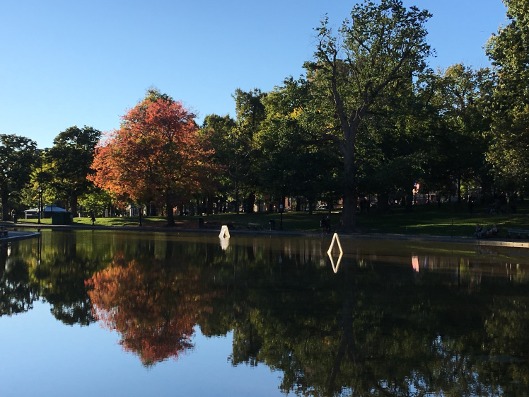 Travel Guide: Boston on a Budget - Boston Common Frog Pond - www.spousesproutsandme.com