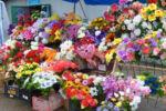 Kunstblumen gibt es in Waldai überall zu kaufen. Die Waldaier schmücken damit unter anderem ihre Gräber.