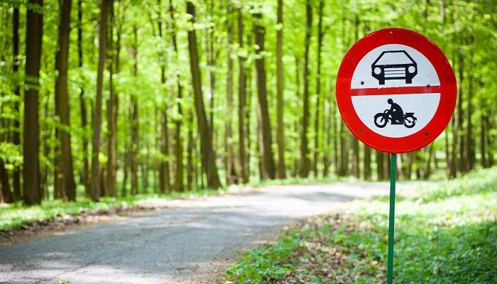 Art. 244 kk Złamanie zakazu prowadzenia pojazdów