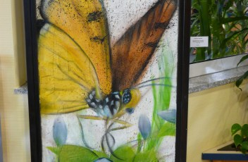Graffiti Schmetterling mit Glas