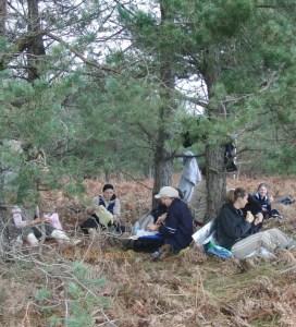 Društvo ljubitelja prirode ''Bagrem'' okupilo se u zaštićenom rezervatu borove šume kod kontejnera na križanju Savske u Vukovarske ulice u Zagrebu