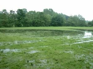 Jedni od rijetkih koji su zadovoljni poplavom su seljaci koji smatraju kako oborine ni ove godine nisu podbacile pa će i odšteta od države biti veća