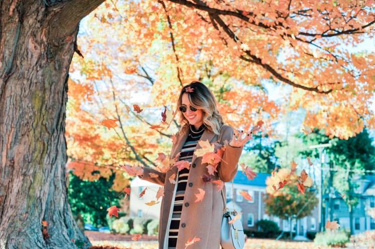 fall-leaves-horizontal-3