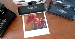 Sofortbildcamera von Polaroid, Polaroid mit Tulpenmotiv, photodarium 2017