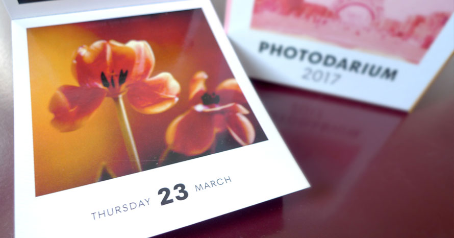 photodarium_07