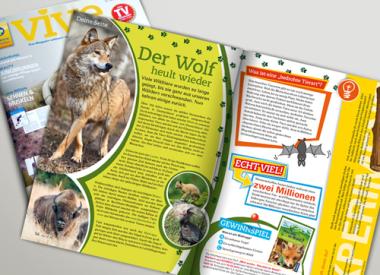 Editorial Design, Kindermagazin