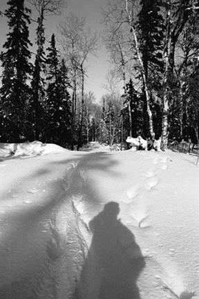 Moose Tracks, Gunflint Trail