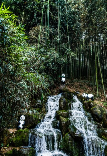 Pandas by the waterfall - Damyang Juknokwon Bamboo Forest