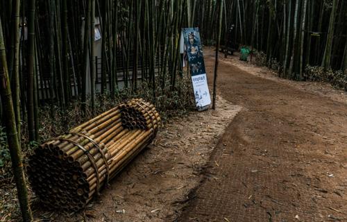 Bamboo Bench - Damyang Juknokwon Bamboo Forest