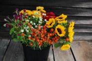 Fall DIY bucket- photo Spring Forth Farm