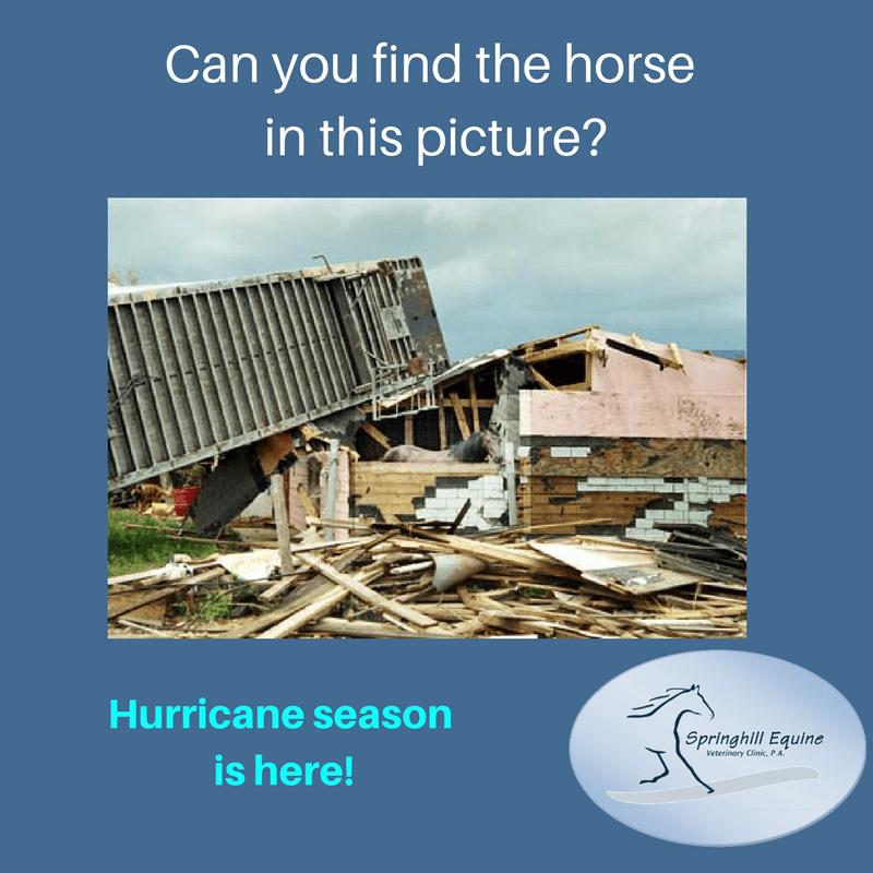 Tuesdays with Tony – Hurricane Prep
