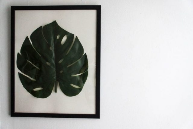 diy-monstera-28-of-28