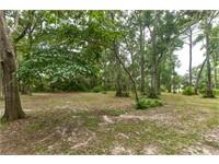 152 Spring Island Drive thumbnail image 3