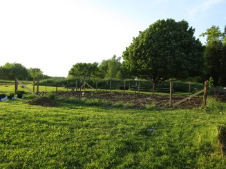 Putting in the fence posts around the garden.