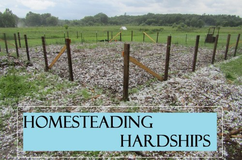 Homesteading Hardships