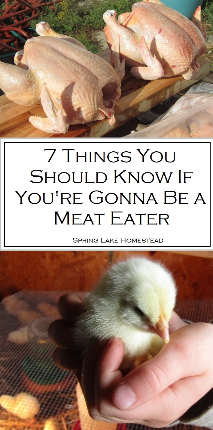 7 Things You Should Know About Meat