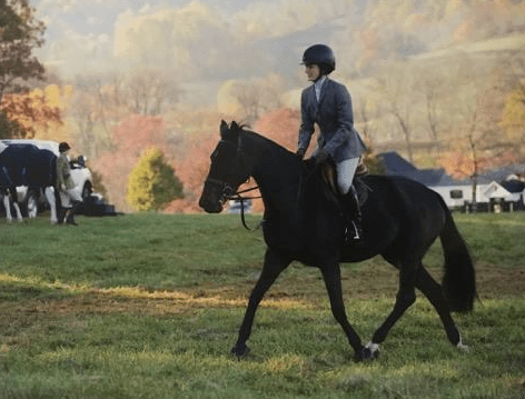 Sloane Coles Foxhunting