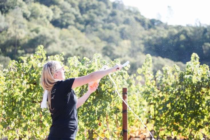 Fantesca Estate Vineyards