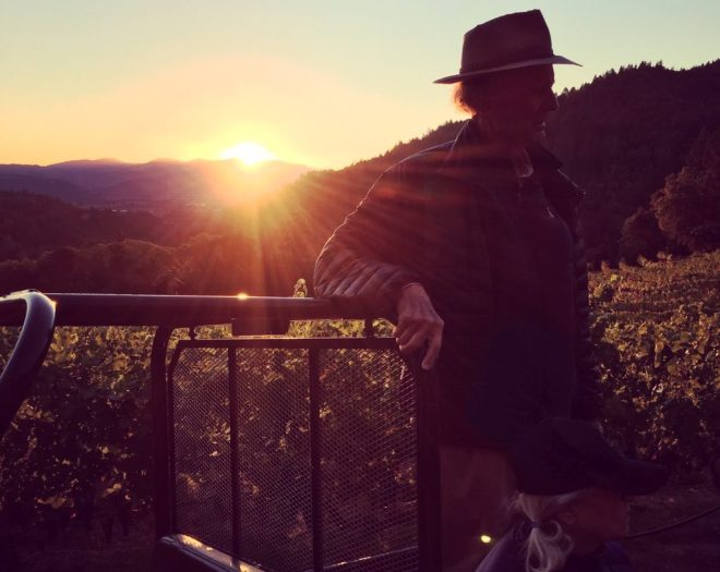 Marston Family Vineyard sunset
