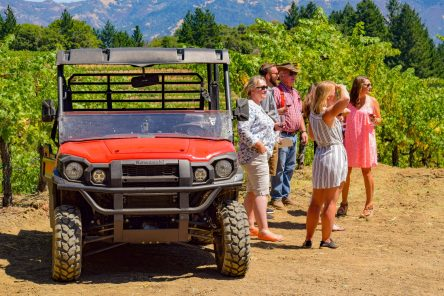 Schweiger Winery - Visitors
