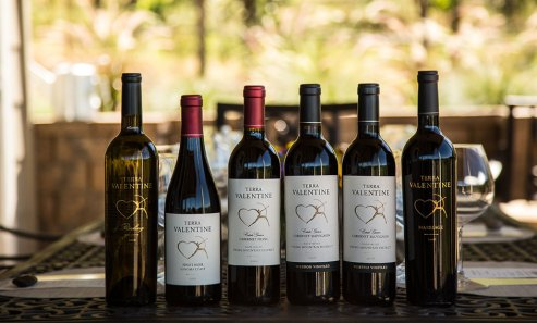 Terra Valentine Wines 2